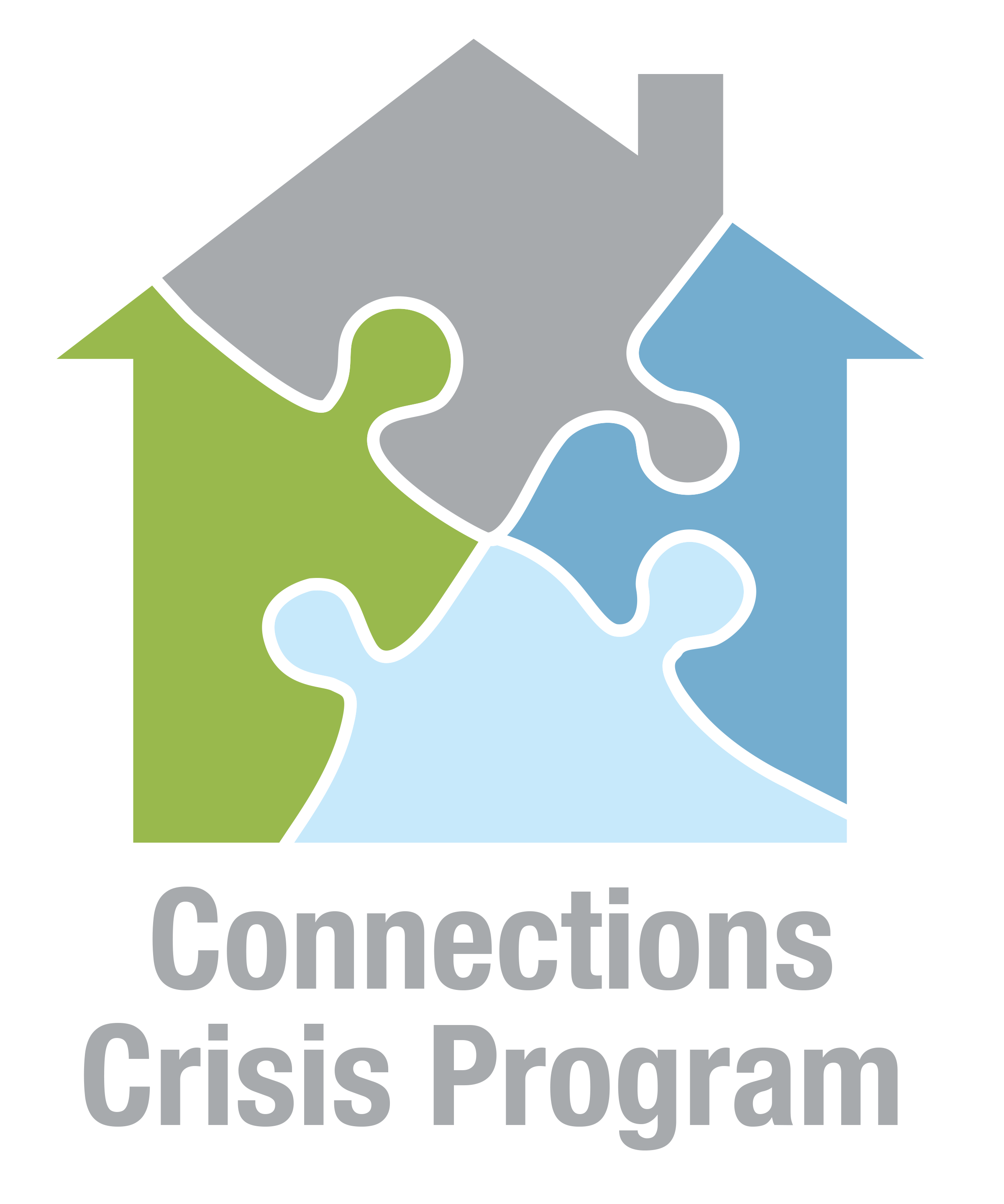 connections crisis logo